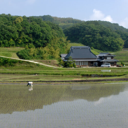神戸農村スタートアッププログラム 受講者募集中